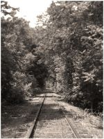 the rail less traveled by CapnSkusting