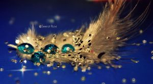 feather drop by seeratrizvi