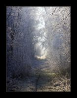 Way To Winter's Secret Garden by Wilhelmine