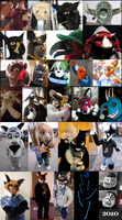 2002 to 2010 Fursuits by ScardyKat