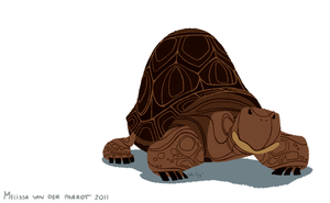 Galapagos Tortoise by sketchinthoughts