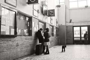Train station by cosmin-m