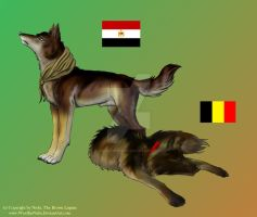 APH WN: Egypt and Belgium by WoelfinNishi