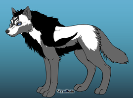 StarWritter as A Wolf by WOLFBLADE111