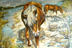 Ponies of Assateague No. 1 by RealNsurreal