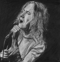 Robert Plant by crazyisperfect