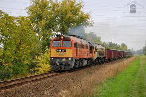 628 175 and SZ 362 034-5 with freight in Gyor by morpheus880223