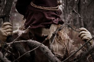 """Scarecrow"" photoshoot - 2 by JilliD"