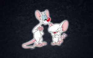 Pinky and The Brain by cesaraquino