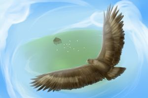 Aquila the Eagle
