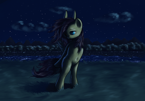 Walk in the night by icefairy64