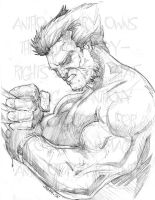 Wolverine Pencils 4 Deathwish by Anmph