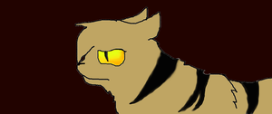 Close up of tigerclaw64 by tigerclaw64