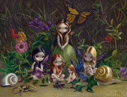 A Gathering of Faeries by jasminetoad