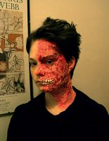 Two-Face makeup by drwhofreak
