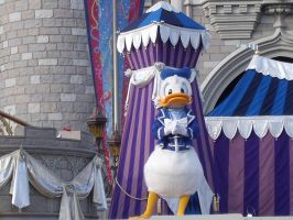 Donald Duck, Ready for Action by LostWendy