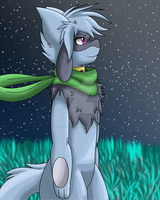 Lucky The Riolu by Zander-The-Artist