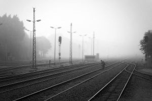 Foggy but sure by Tantawi