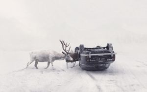 Until You Wake Up by MartinStranka