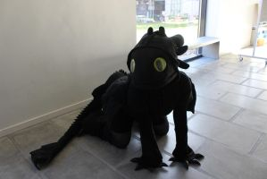Toothless Kigu cosplay  xD by Aabenhuus