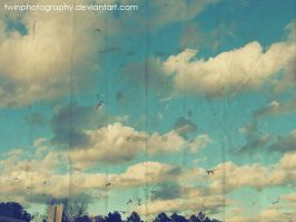 oh so vintage sky by twinphotography
