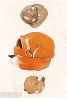sleeping babies by mybirdy