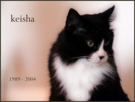 Rest In Peace Keisha by glassonion14