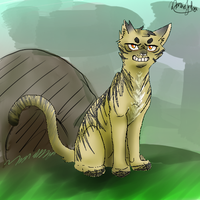 That Kittypet by MajuFogo
