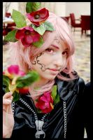Marluxia: Rosen Thorns by ChroniclesofDestiny