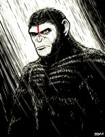 Dawn of The Planet of The Apes - Caesar by Kaigetsudo