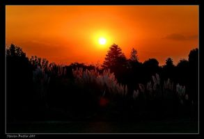 Sunset by lasfe2g
