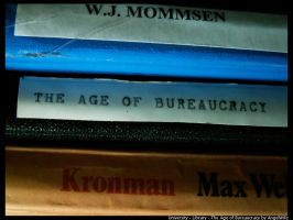 The Age of Bureaucracy by angelwillz