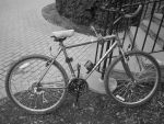 Parked Bicycle by LDFranklin