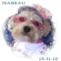 Isabeau 10.31.10 by hallv5