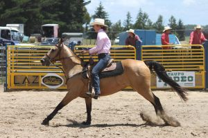Taupo Rodeo 170 by Sooty-Bunnie