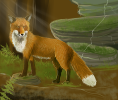 Fox in the Forest by Torokou