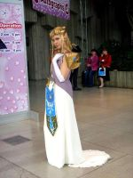 Princess Zelda by pasht-re