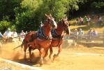 Horse pull by Celem