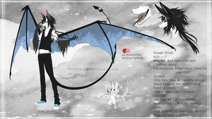 Void 2014 reff sheet by NiseSK