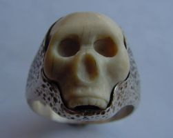 scull by biltongboy