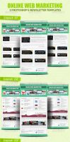 Pro Online Web Marketing by idesignstudio