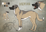 Hadrian - Lost Athens reference by Canis-ferox