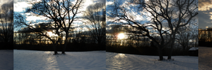 Sunrise over the Snow by Liorart