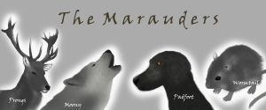 The Marauders by Baneling77