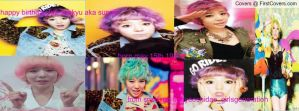 happy birthday lee sunkyu 2013 facebook cover by alisonporter1994