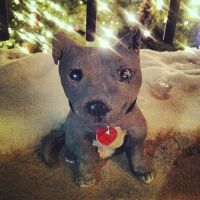 Baby Pit Bull Pup statue by UglyDoll311
