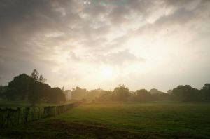 Color of The Morning 107 by dearchivism