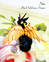 Noir, Black Goldwing dragon2 by rosepeonie