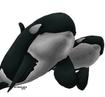 Large Orca pixel by Britannia-Orca