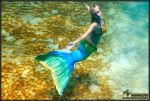 mermaid 4 by AmyFantasea